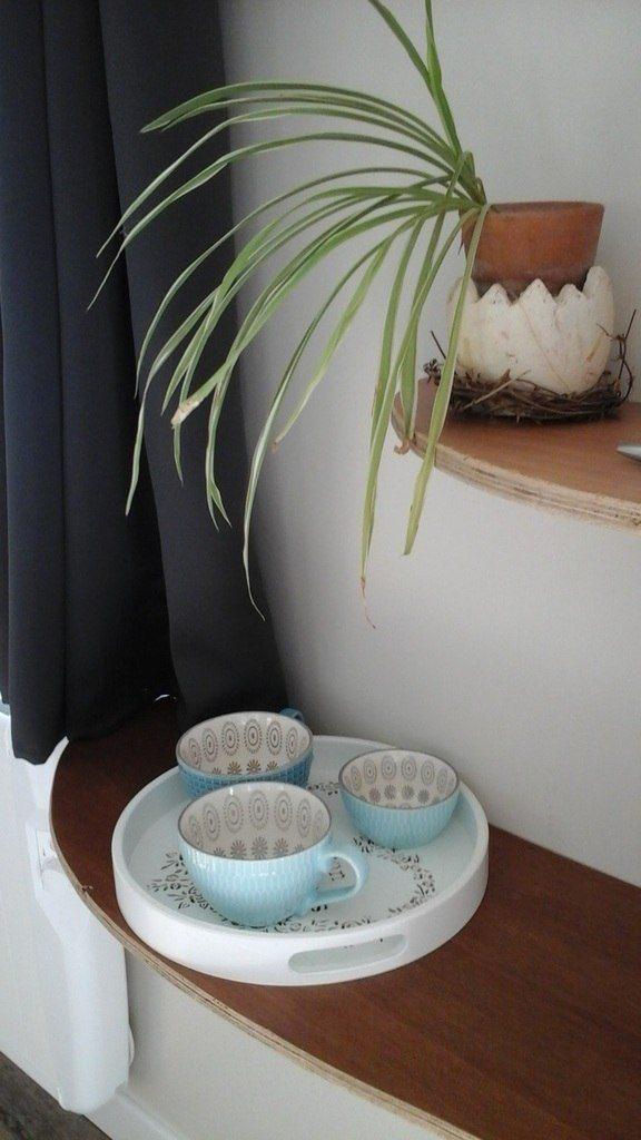 l'Hortensia blanc hangest en santerre